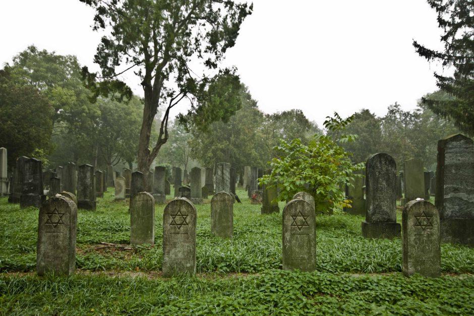 Central Cemetery, Vienna